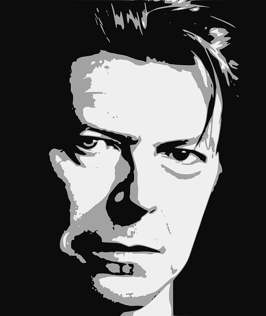 bowie-1152551_640