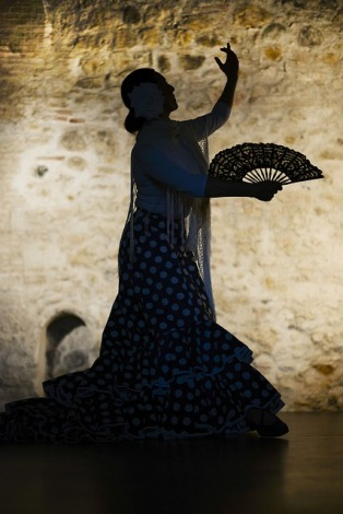 One way of solving a dispute - silently and through the medium of Flamenco
