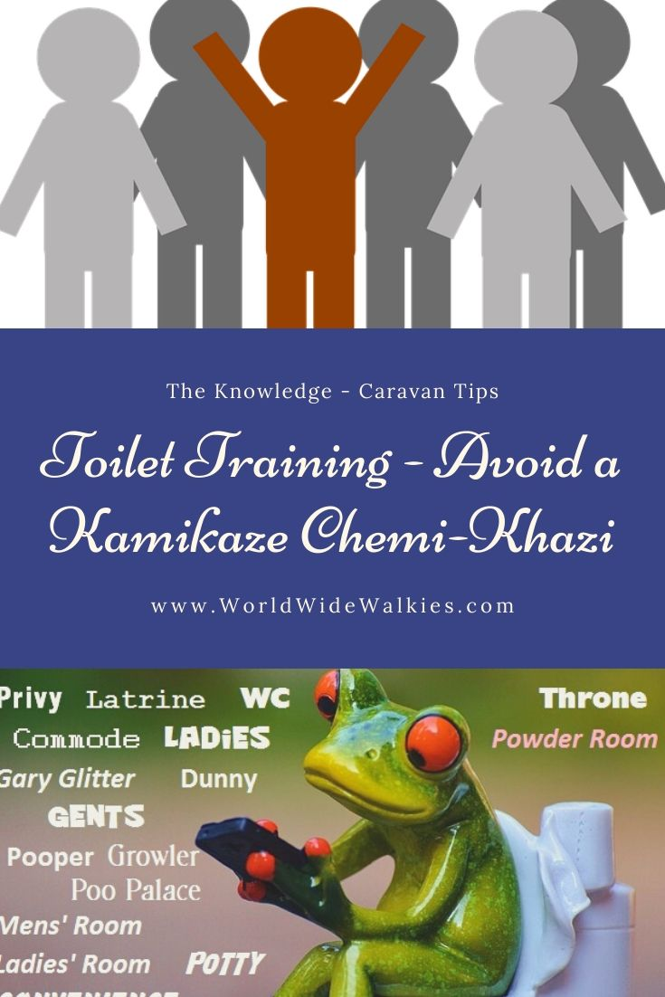 Toilet blog Pin