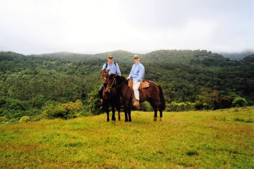 We rode to the rainforest on a horse with no name...