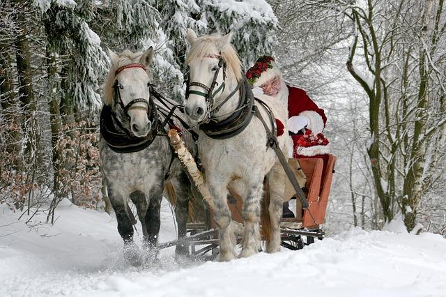 christmas-2949687_640