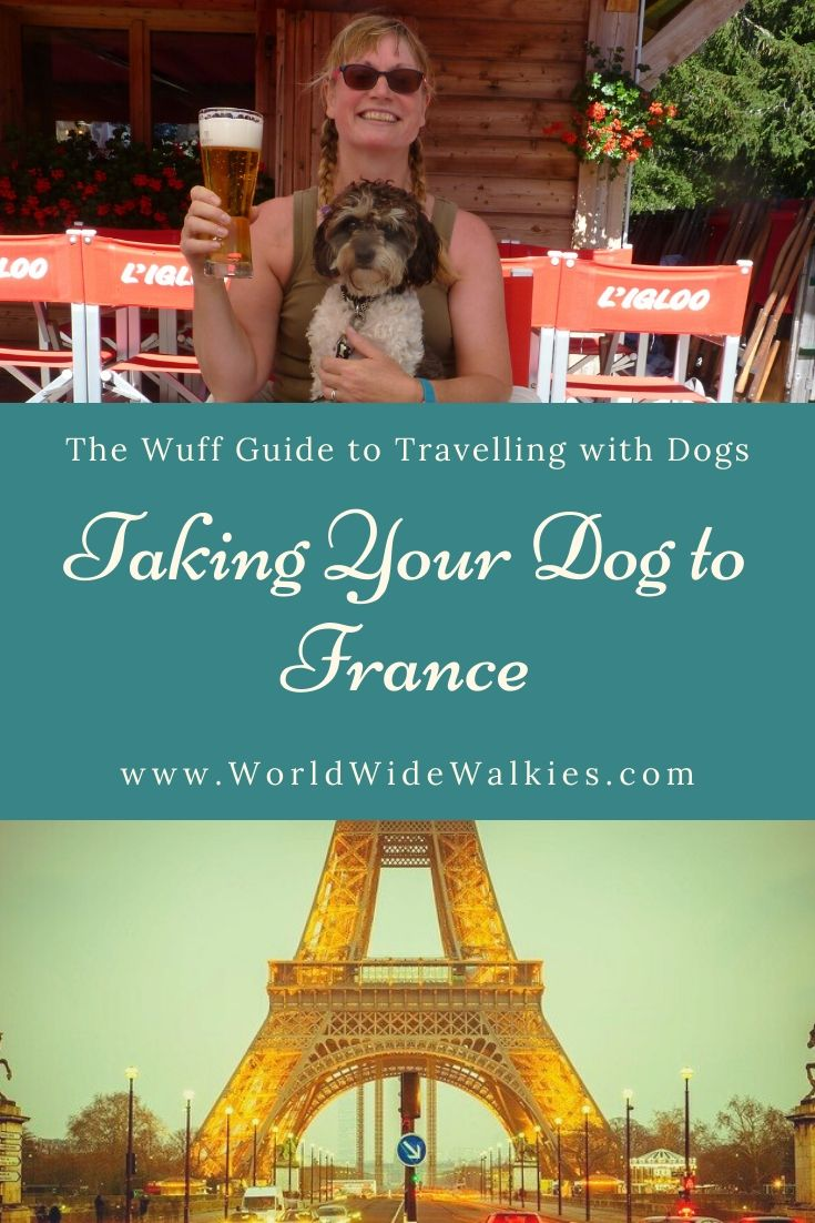 Taking Dog to France Pin