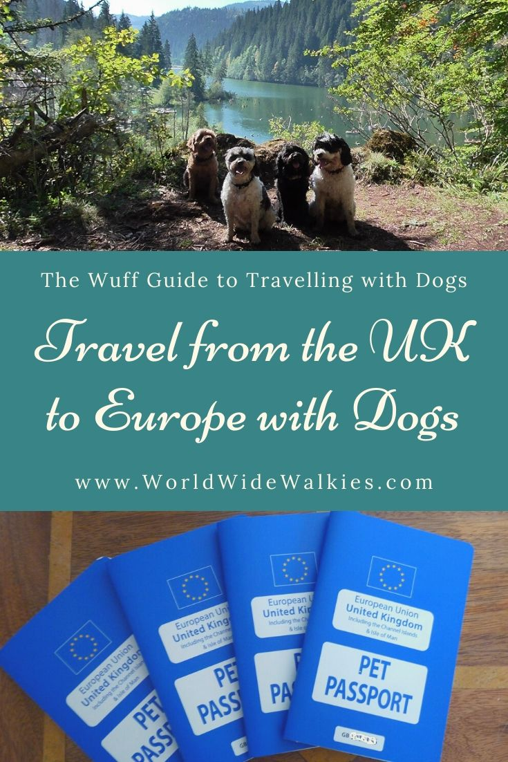 Travel from the UK to Europe with Dogs Pin