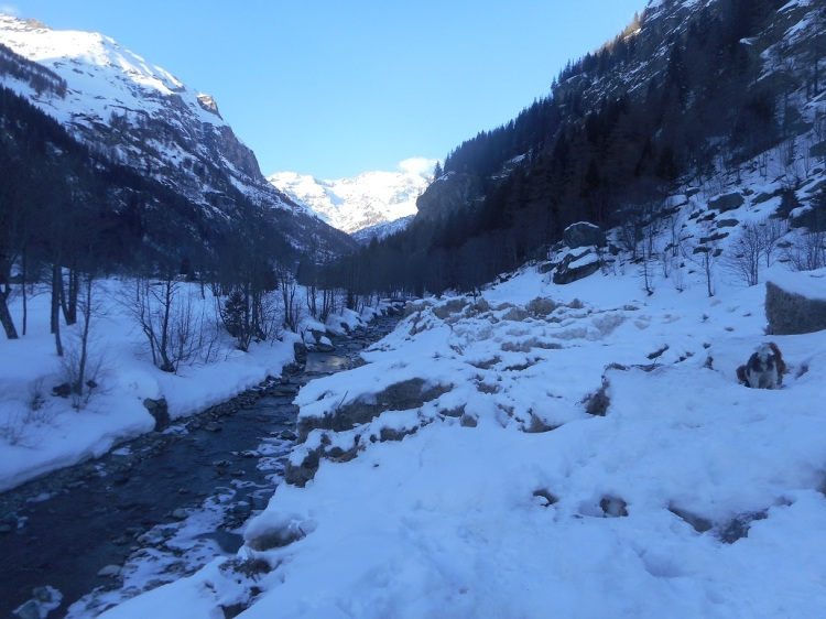 Lys Walk Avalanche
