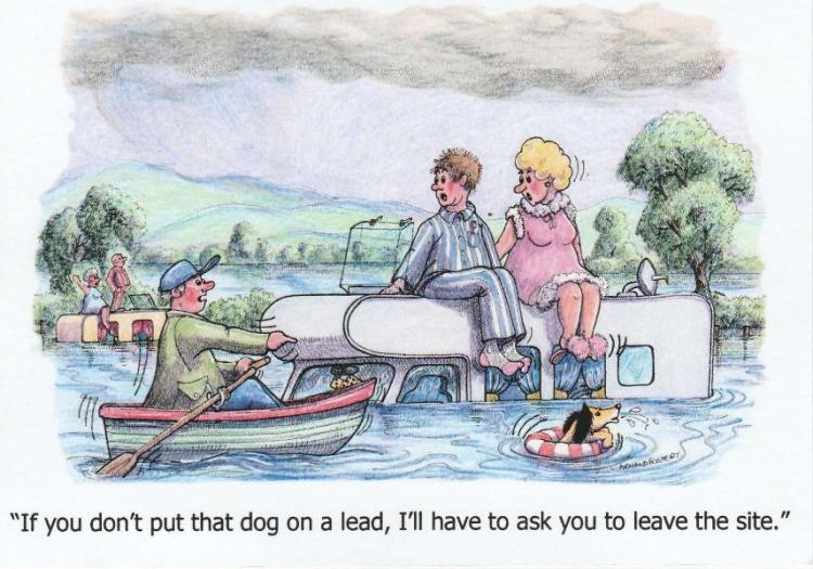 Dog Walking-page-001