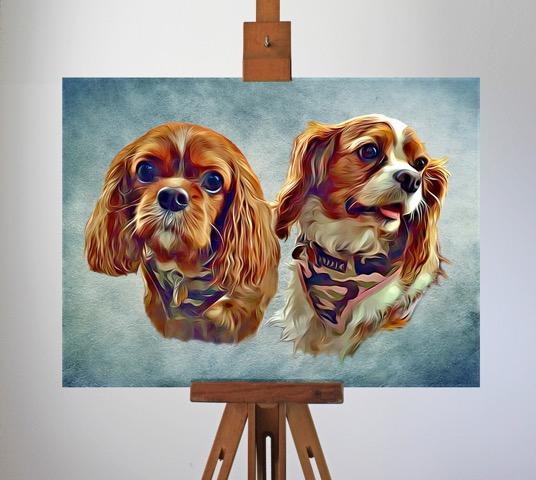 Cavalier_Pet_Portrait