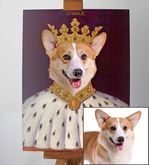 Corgy_King_Picture