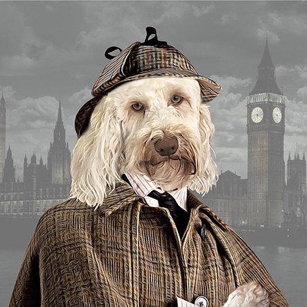 Dog_Sherlock_Portrait