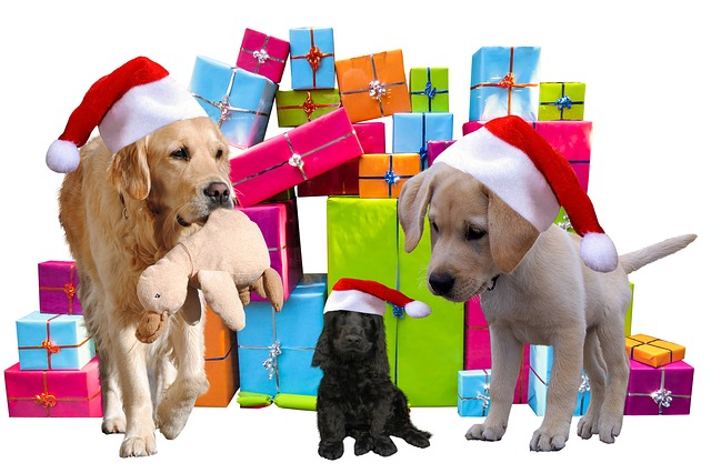 Pups_Aren't_Pressies