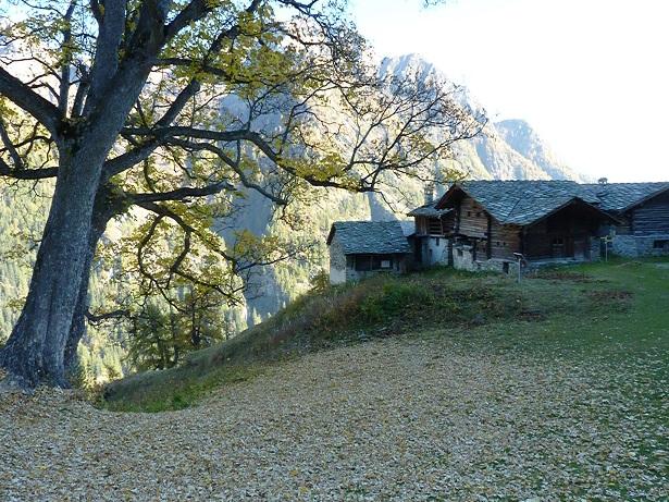 Alpenzu_village.JPG
