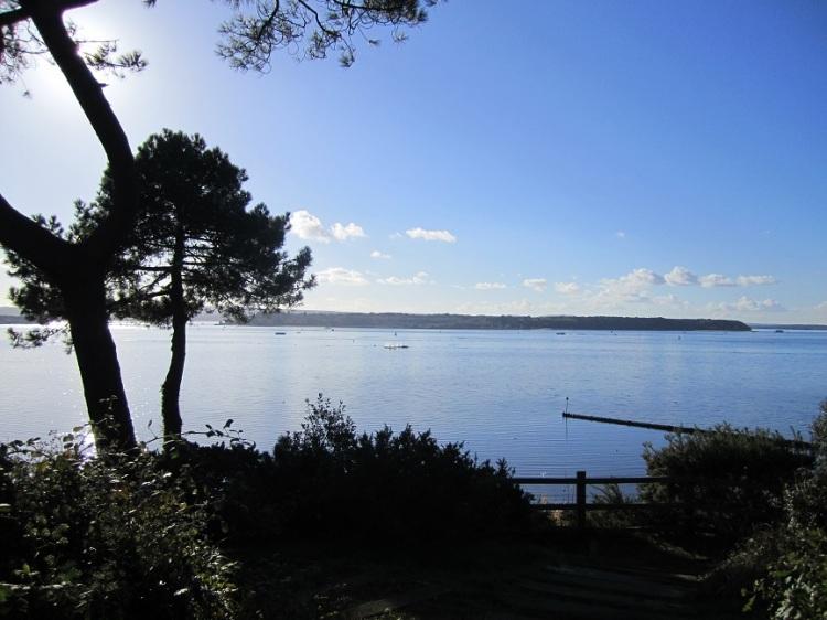 Poole_Harbour.JPG