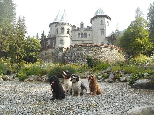 Castel_Savoie