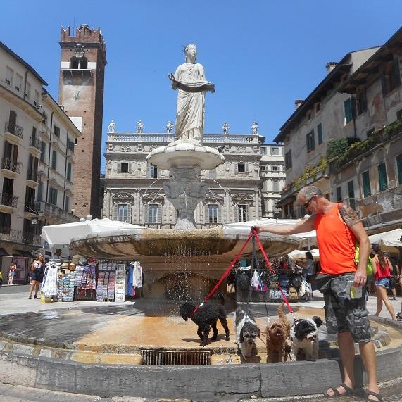 Piazza_Erbe_Verona