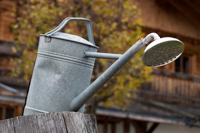 watering-can-3789706_640.jpg