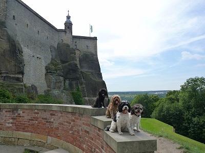 Festung Konigstein (2)