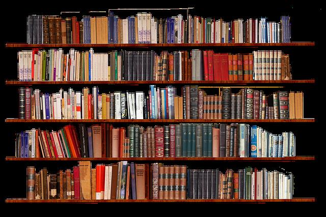 bookshelf-3981515_640.png