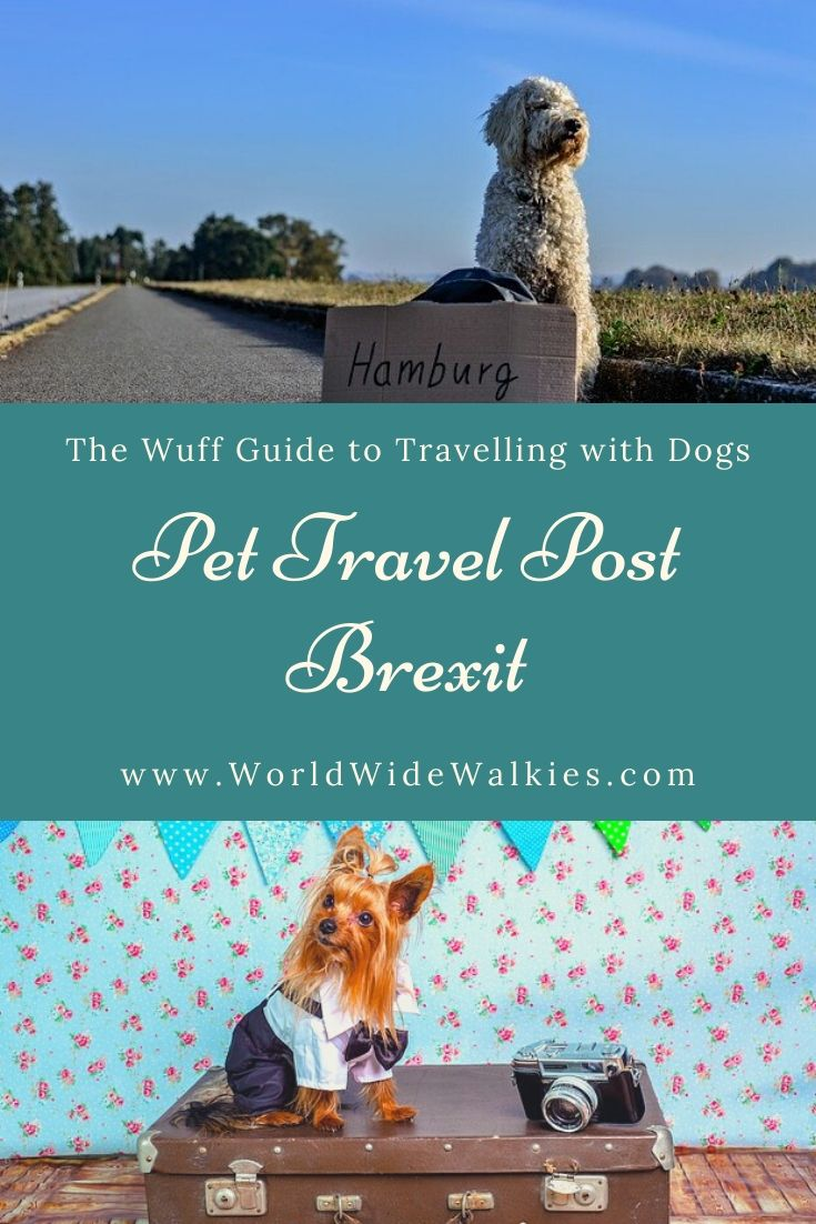 Pet Travel Post Brexit Pin