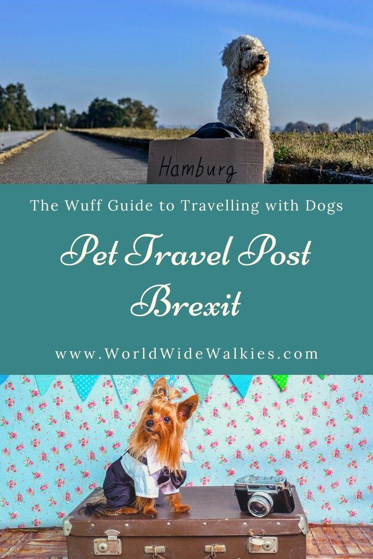 Pet Travel Post Brexit Pin