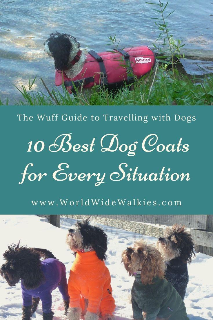 10 Best Dog Coats Pin