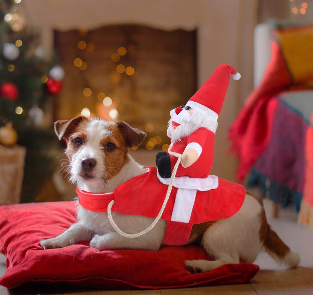 Dog_coat_santa_riding (2)