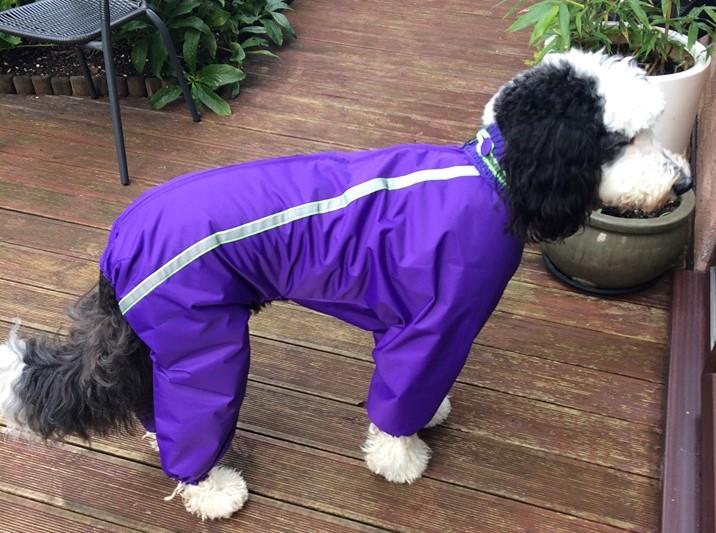 Slush_suit_handmade_purple_1 (2)
