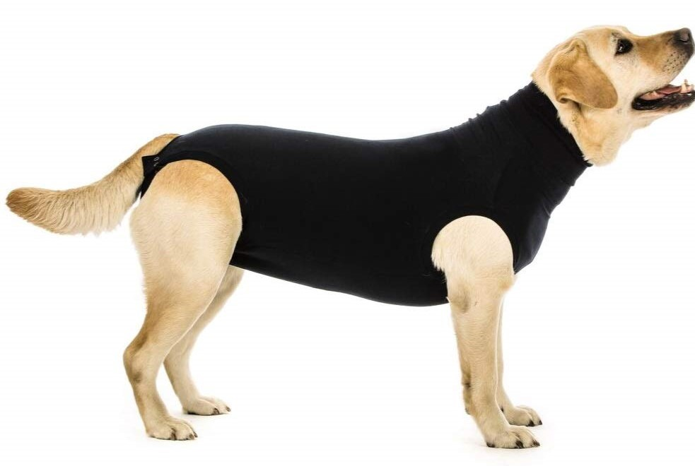 Suitical_dog_post_op_recovery_coat.jpg