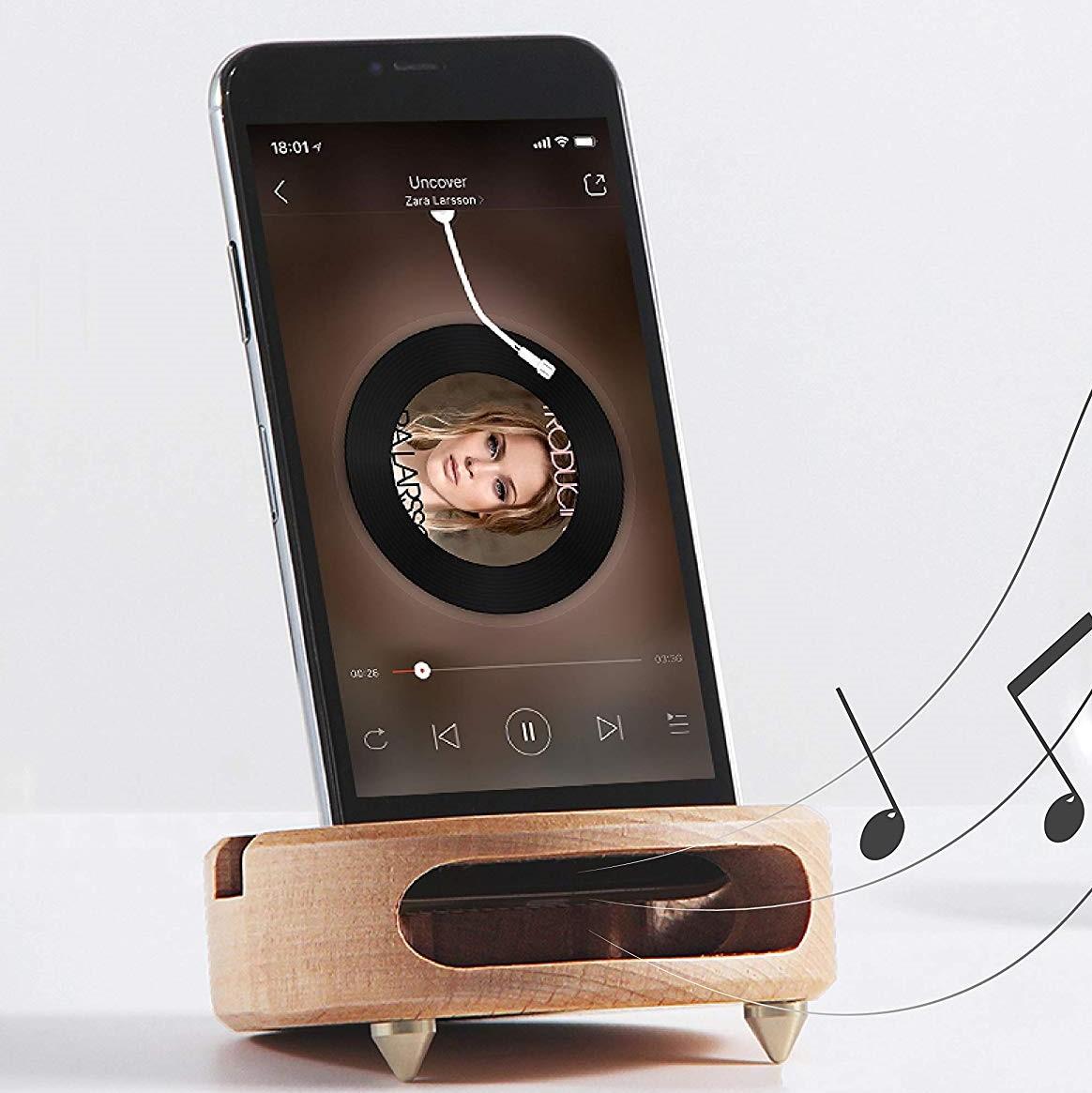Wooden_speaker_amplifier (2).jpg