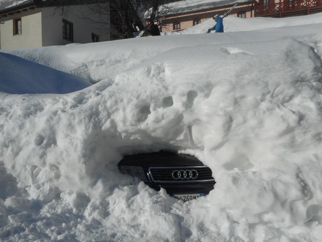 The Audi