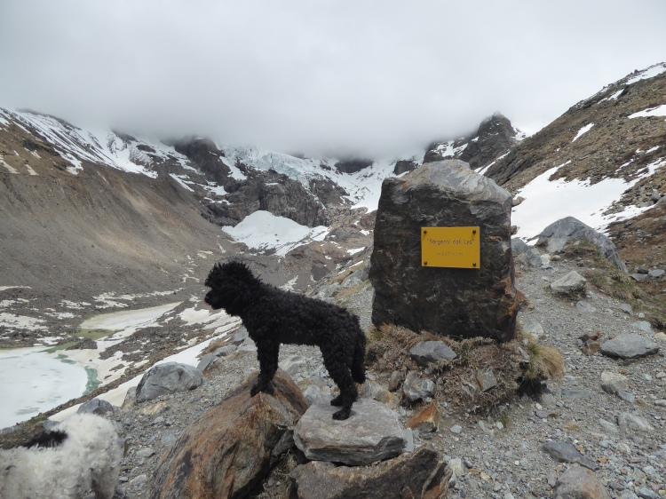 P1020893 Lani mit glacier