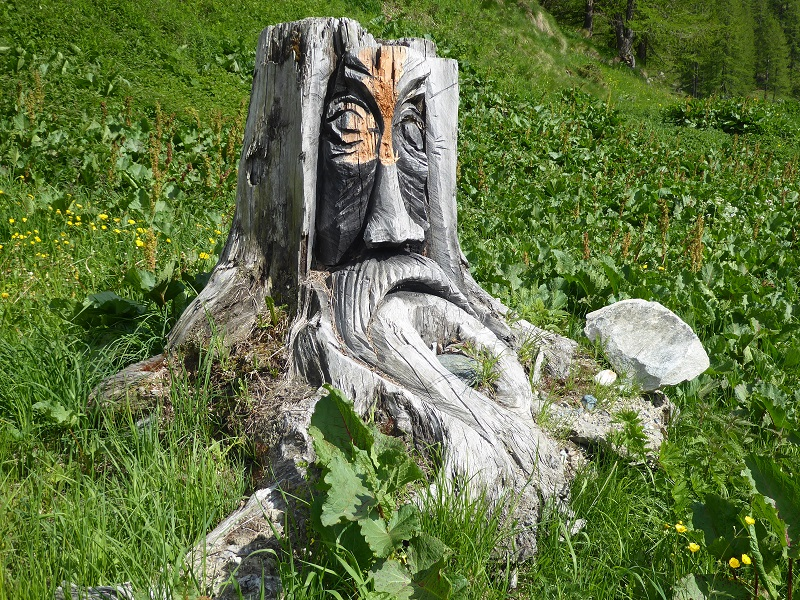 face_carved_into_tree_stump (2)