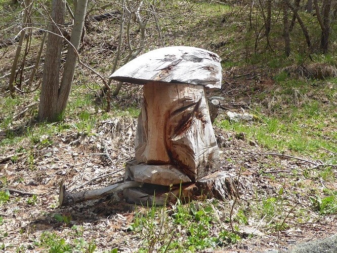 Face_carved_into_tree_stump