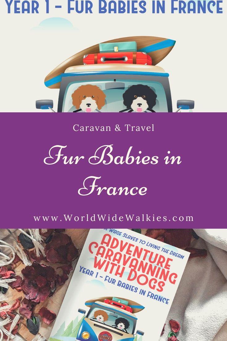 Fur Babies Book Pin