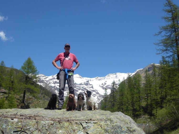 Man_dogs_mountain