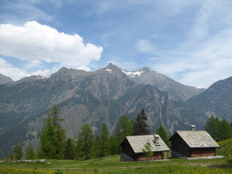 alpine_houses