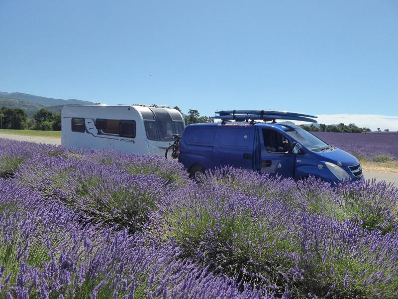 caravan_in_lavender
