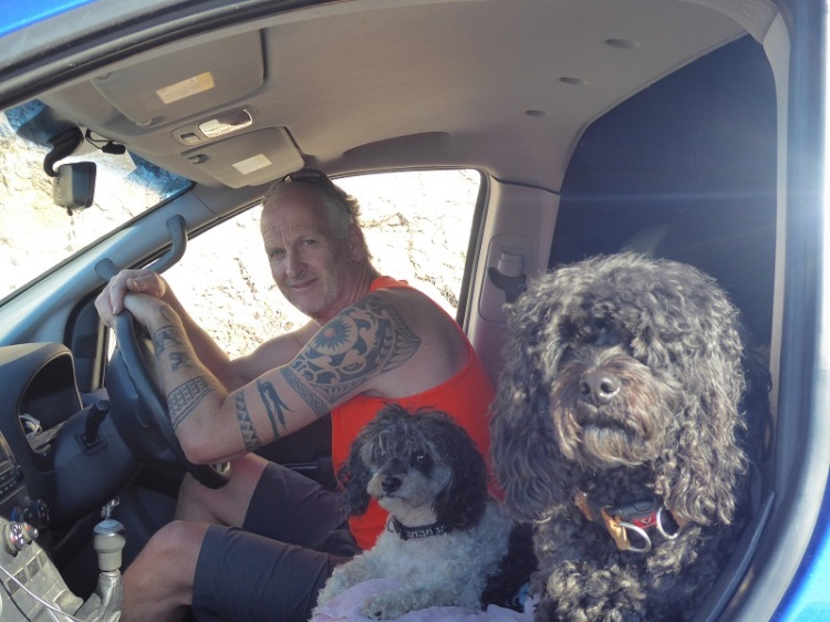 Man_dogs_in_car