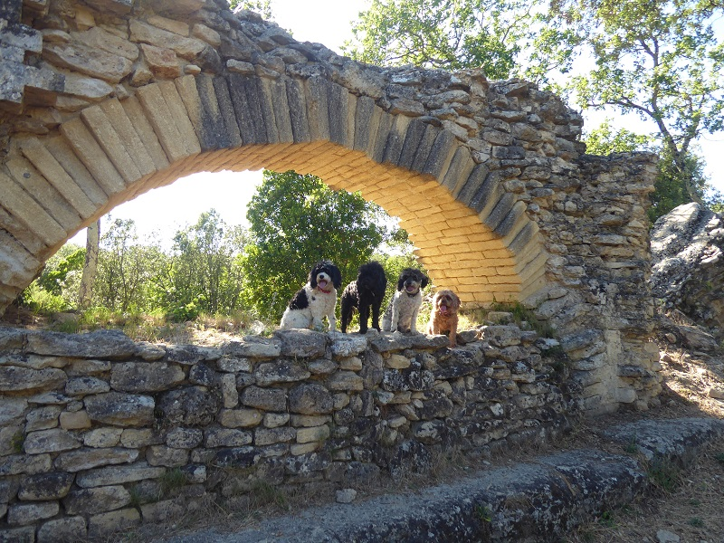 Pont_du_Gard_start