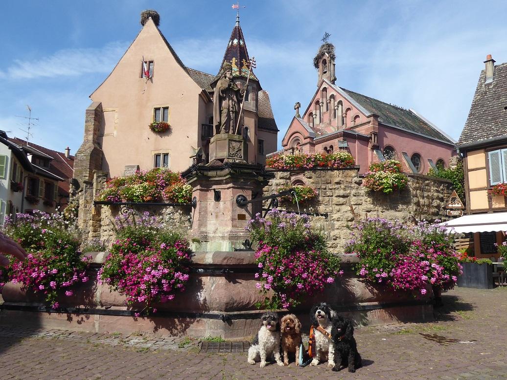 Eguisheim_Alsace