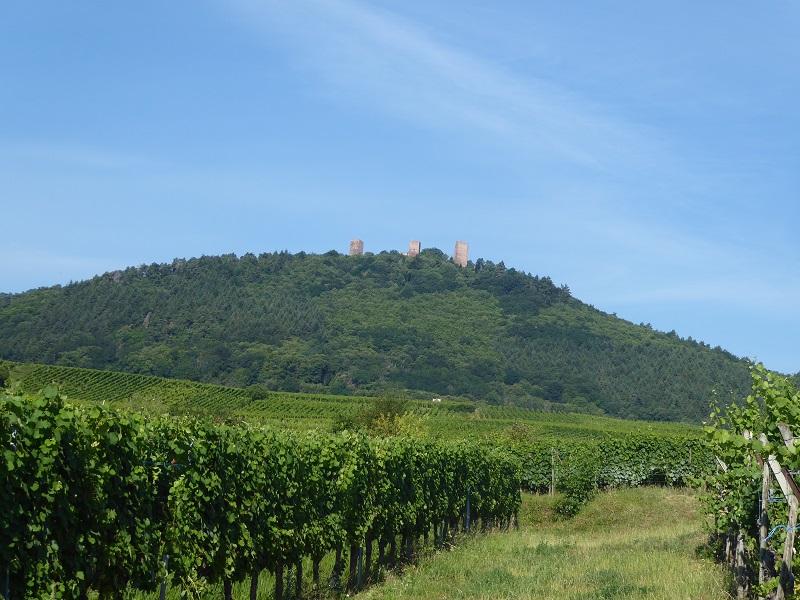 Eguisheim_trois_chateaux_Alsace